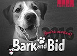 Bark and Bid